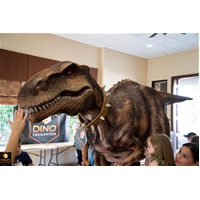 Dino Encounters Day Camp