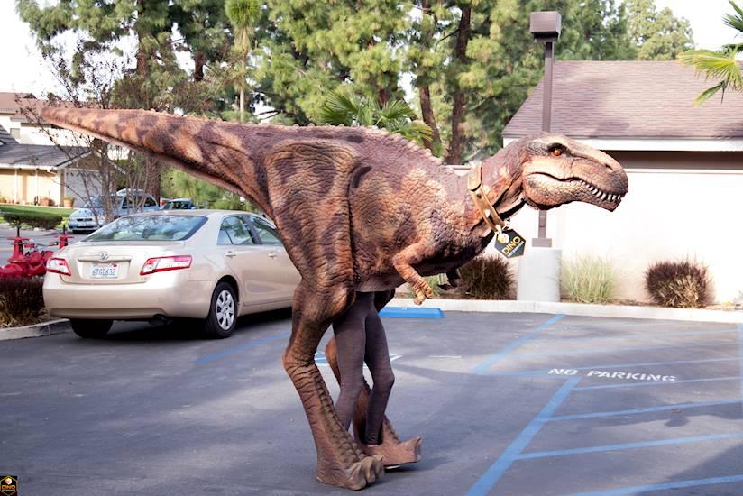 <p>Dino Encounter Ranger Party</p>