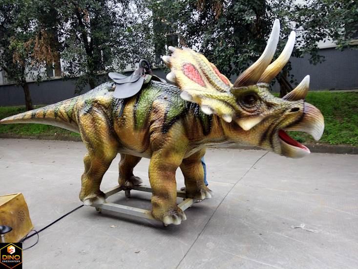 <p>Triceratops Ride</p>