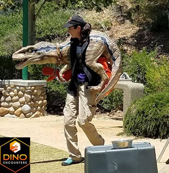 <p>Razer the Deinonychus</p>