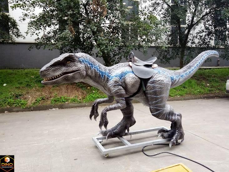 <p>Raptor Ride</p>