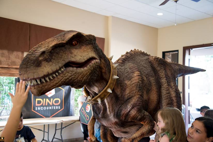 <p>Dino Encounter Ranger Party</p>
